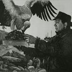 DEREK ZIETSMAN